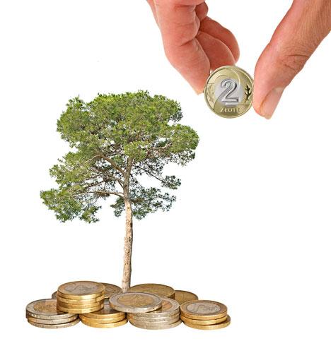ekologia i oszczędnośc